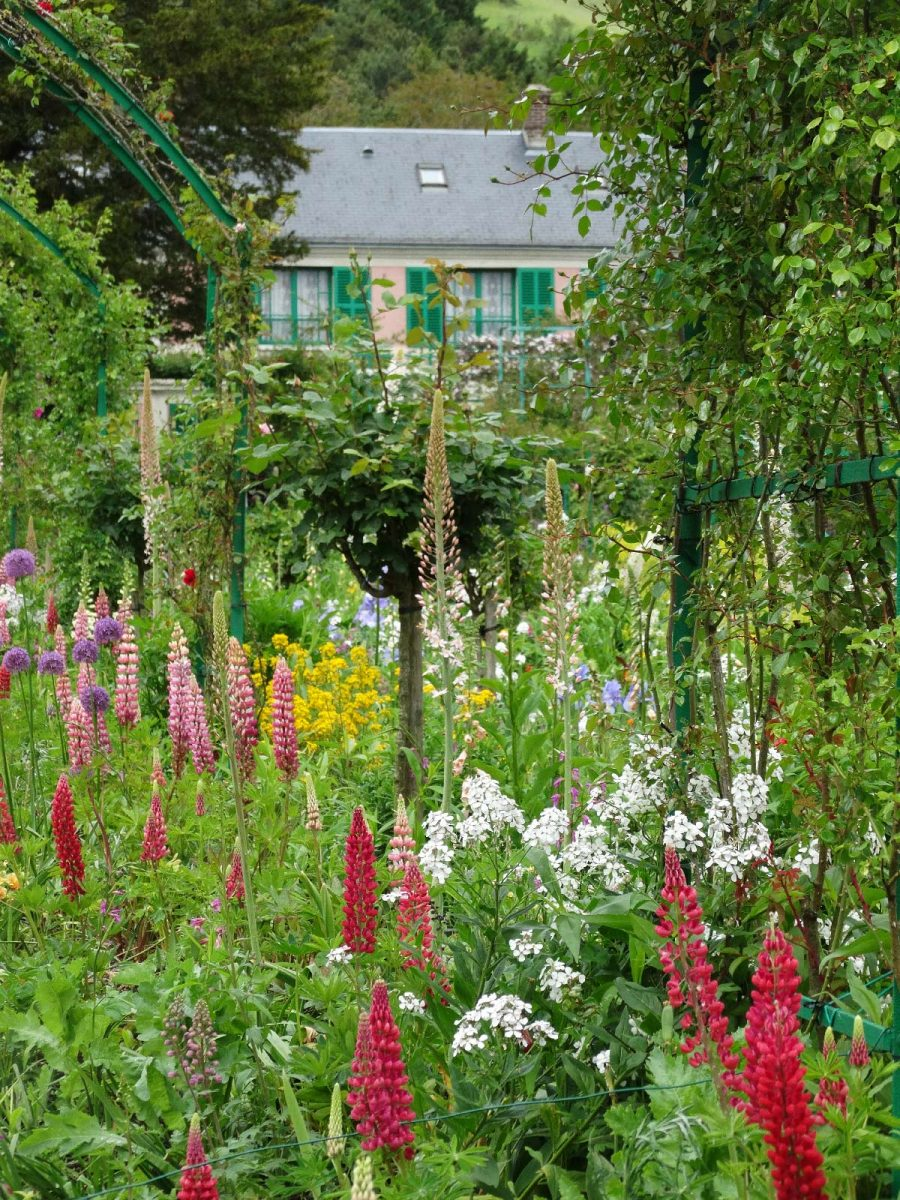 Blütenmeer im Garten von Claude Monet in Giverny