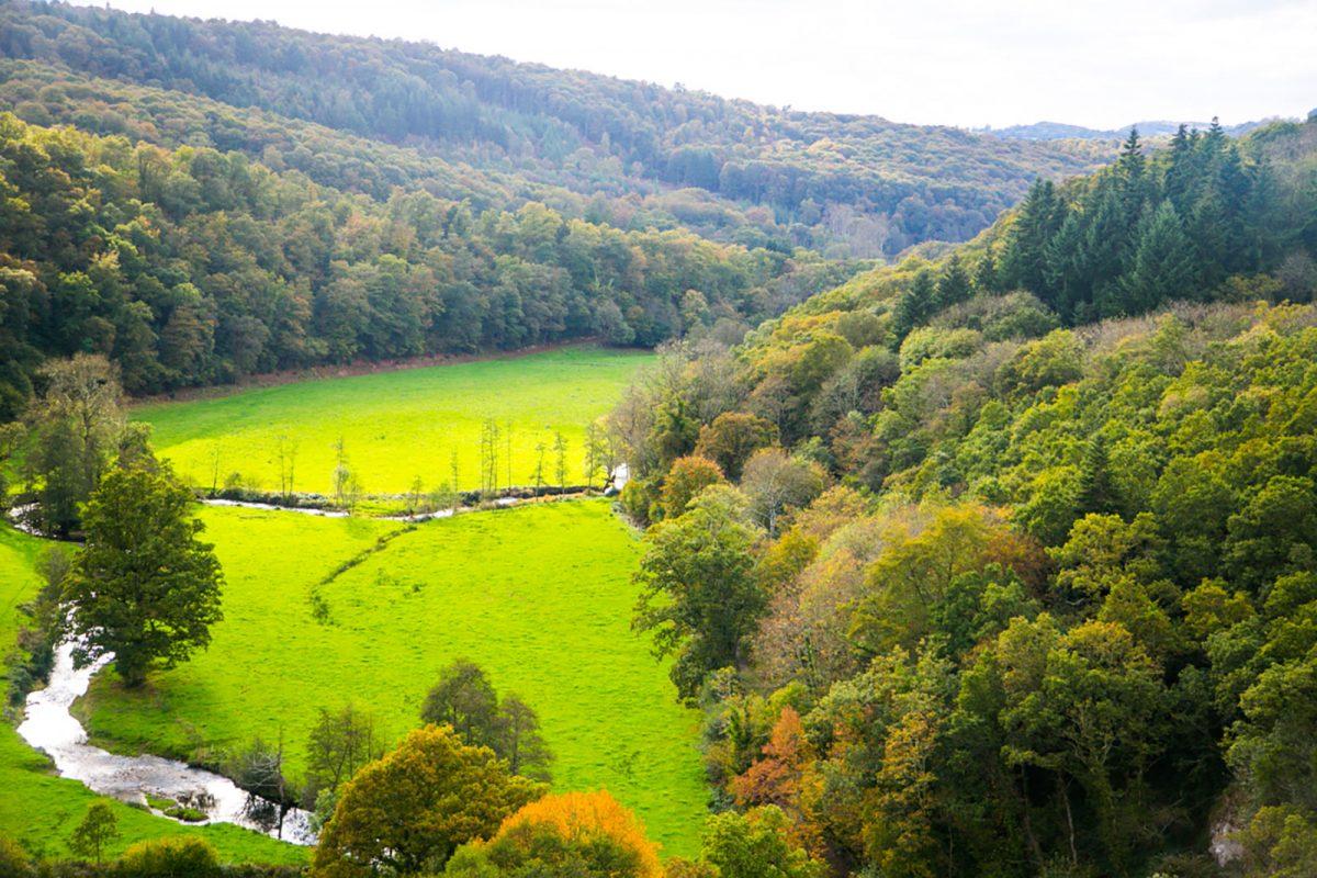 Blick auf die Wallheckenlandschaft vom Viadukt der Souleuvre