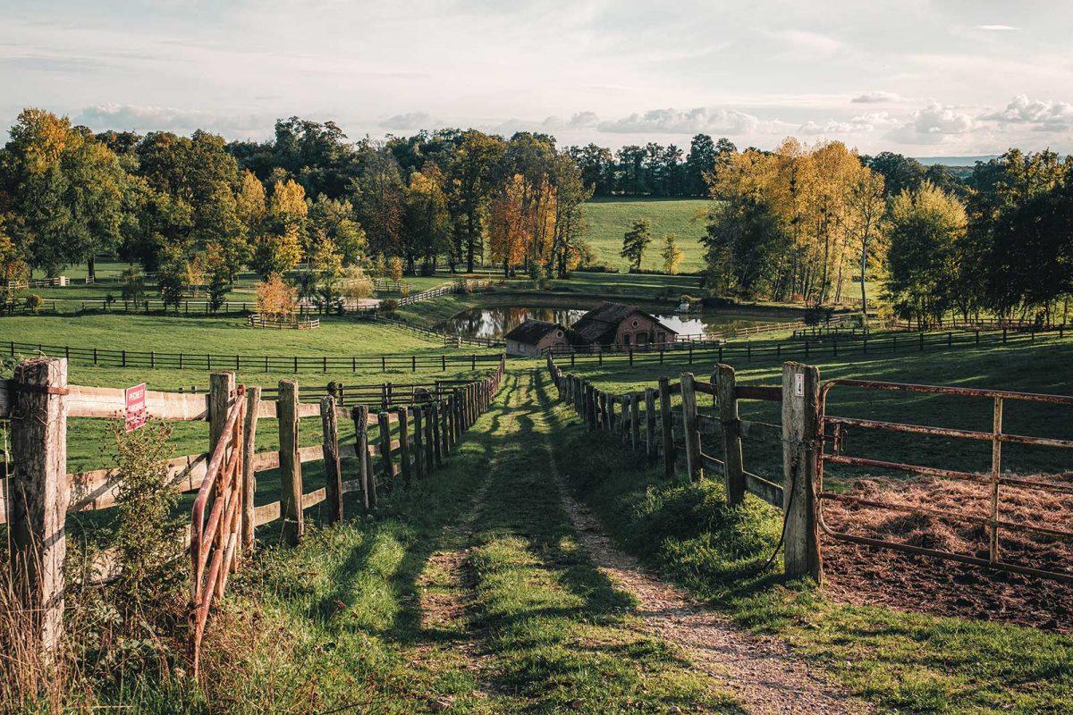 Landschaft Haras du Pin