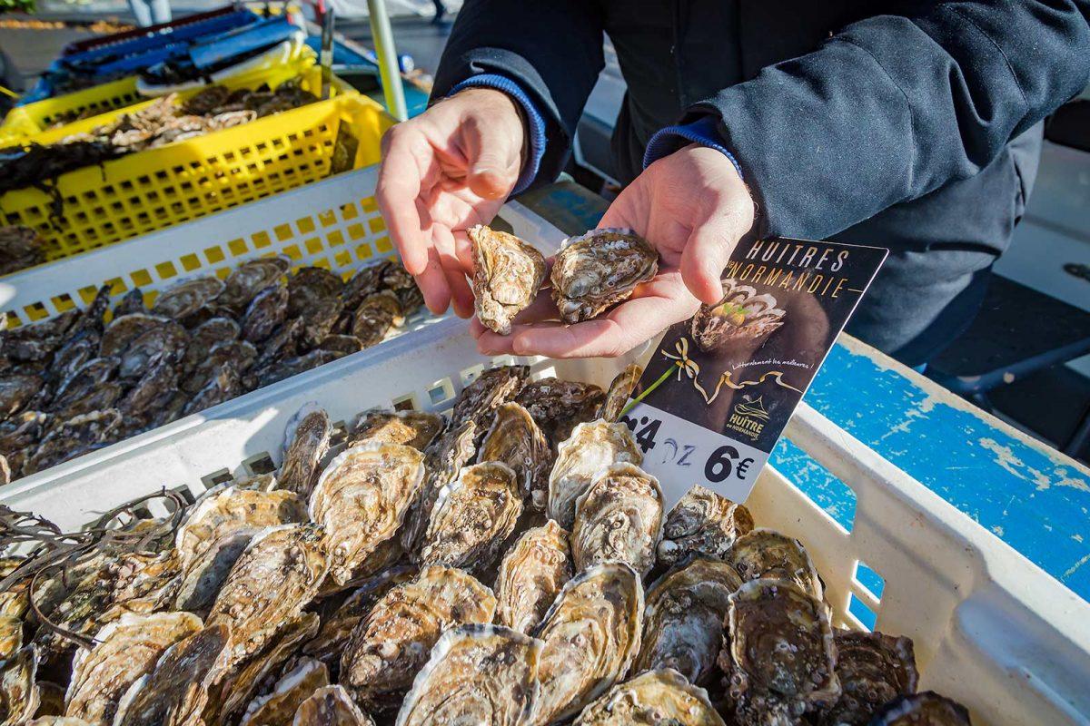 Austern aus der Normandie