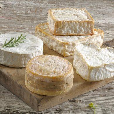 Käse-Roadtrip durch die Normandie