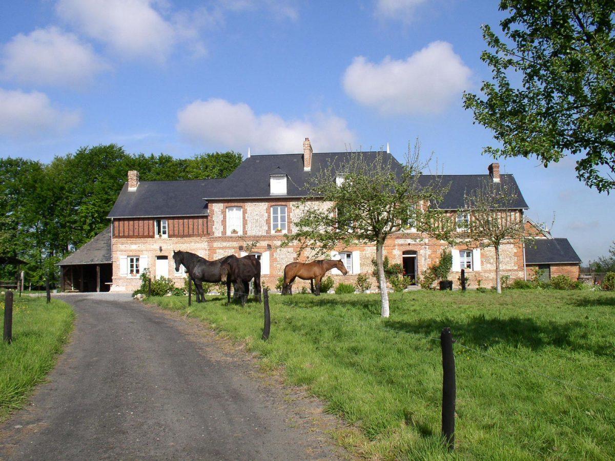 Ferienhaus mit Pferden auf einer Koppel