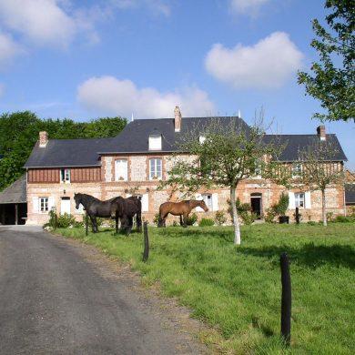 Unsere Auswahl: Ferienhäuser für den Urlaub mit dem eigenen Pferd