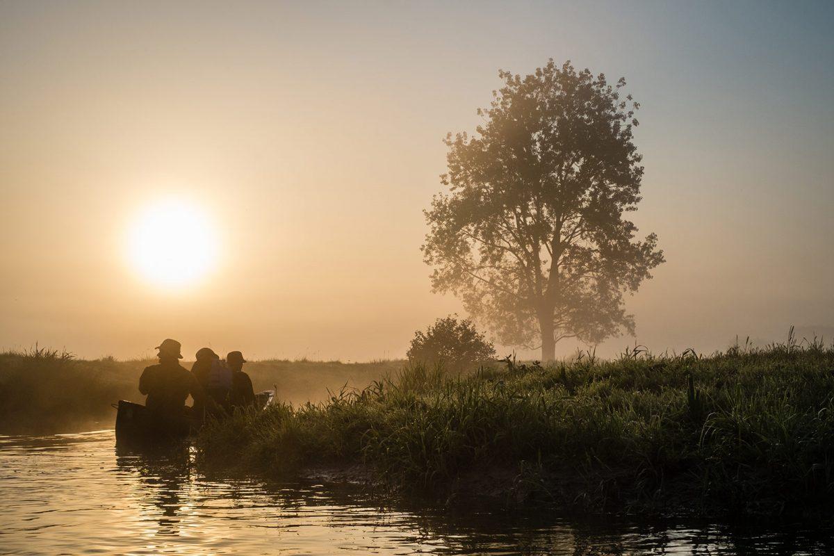 Barque dans le parc naturel régional des marais du Cotentin et du Bessin