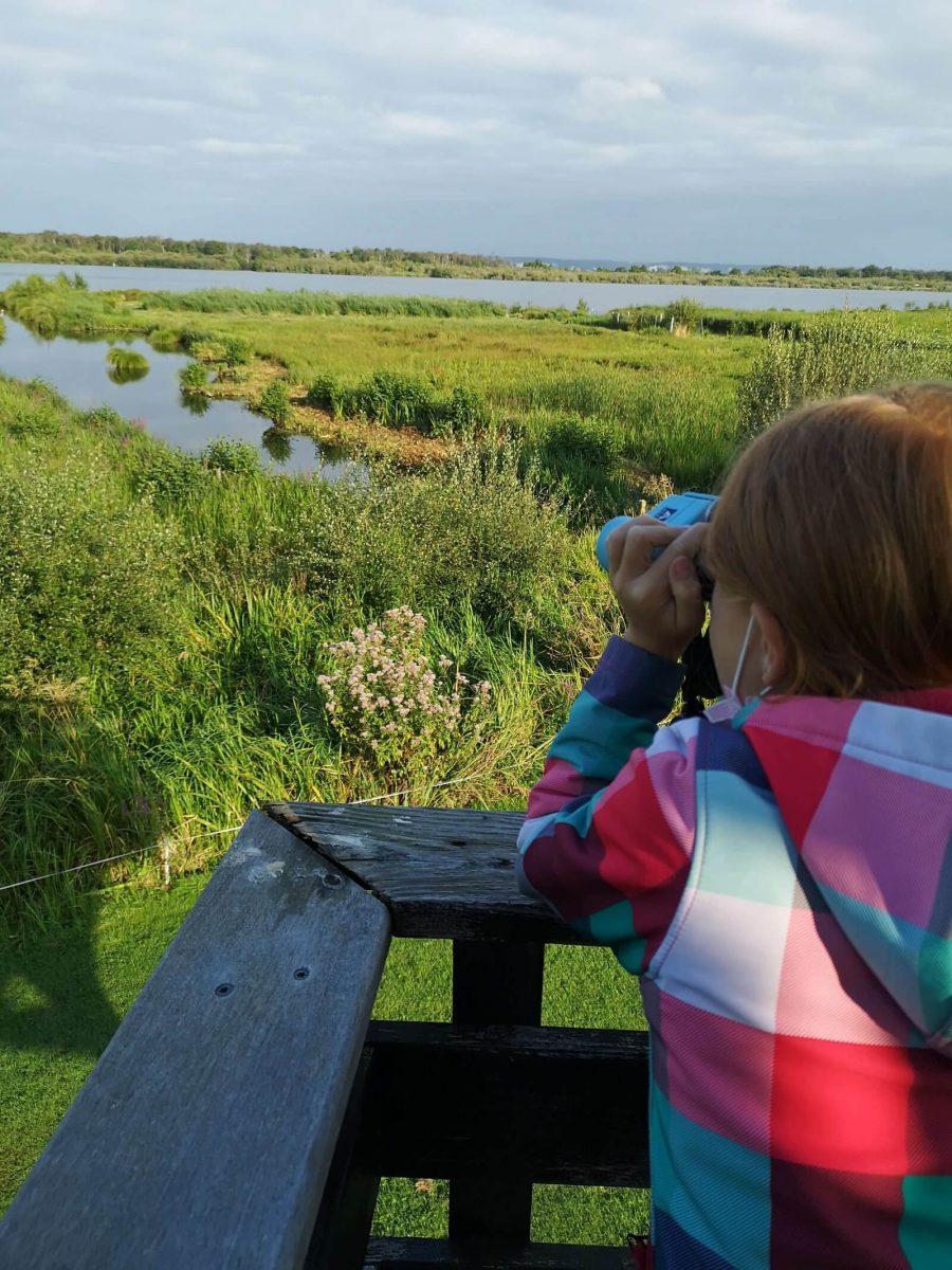 Familienurlaub: Wandern im Marais Vernier
